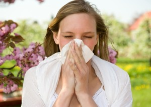 Chiropractic Care and Allergies