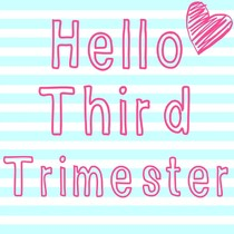 3rd Trimester of Pregnancy